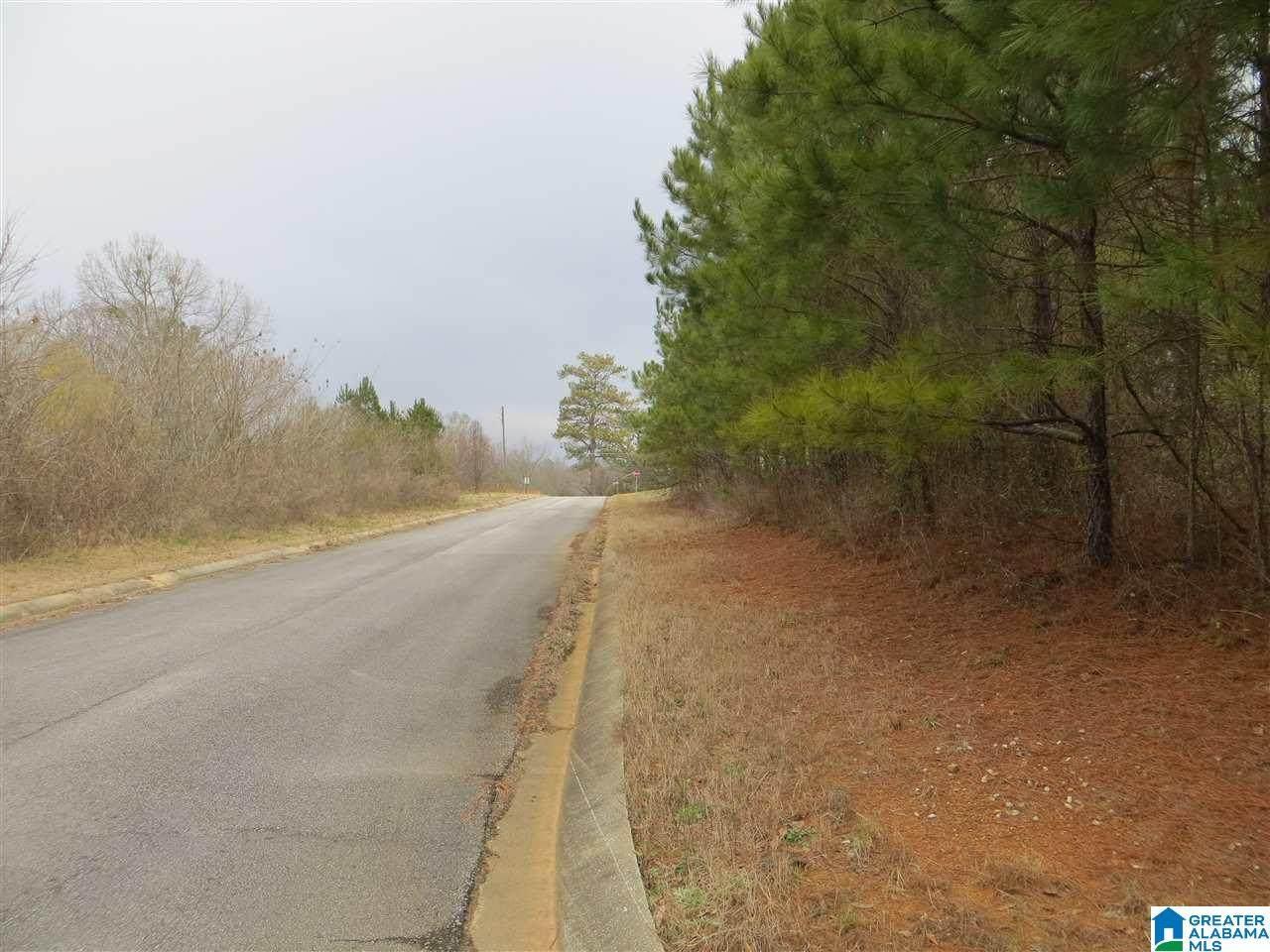 0 Highway 431 - Photo 1