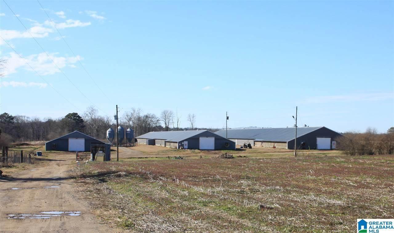 1291 County Road 21 - Photo 1