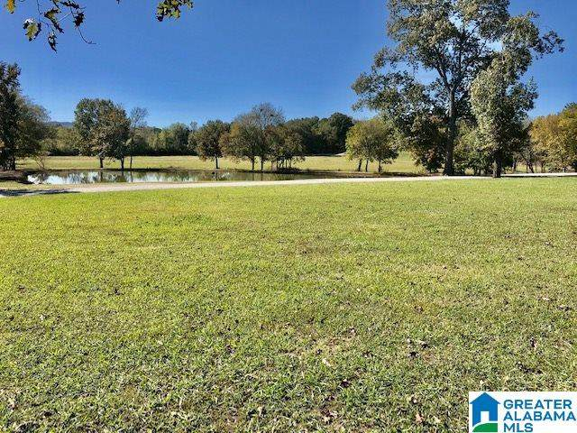 0 Old Centre Hwy #0, Piedmont, AL 36272 (MLS #1274783) :: Bentley Drozdowicz Group