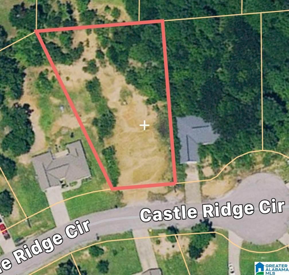 12442 Castle Ridge Cir - Photo 1