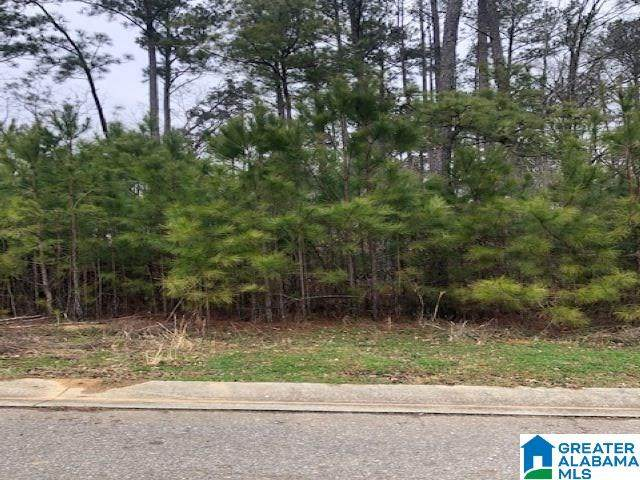 41 Lakeside Valley Dr 12A, Pell City, AL 35128 (MLS #1276574) :: Gusty Gulas Group