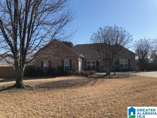 420 Coupland Rd, Odenville, AL 35120 (MLS #1276859) :: Gusty Gulas Group