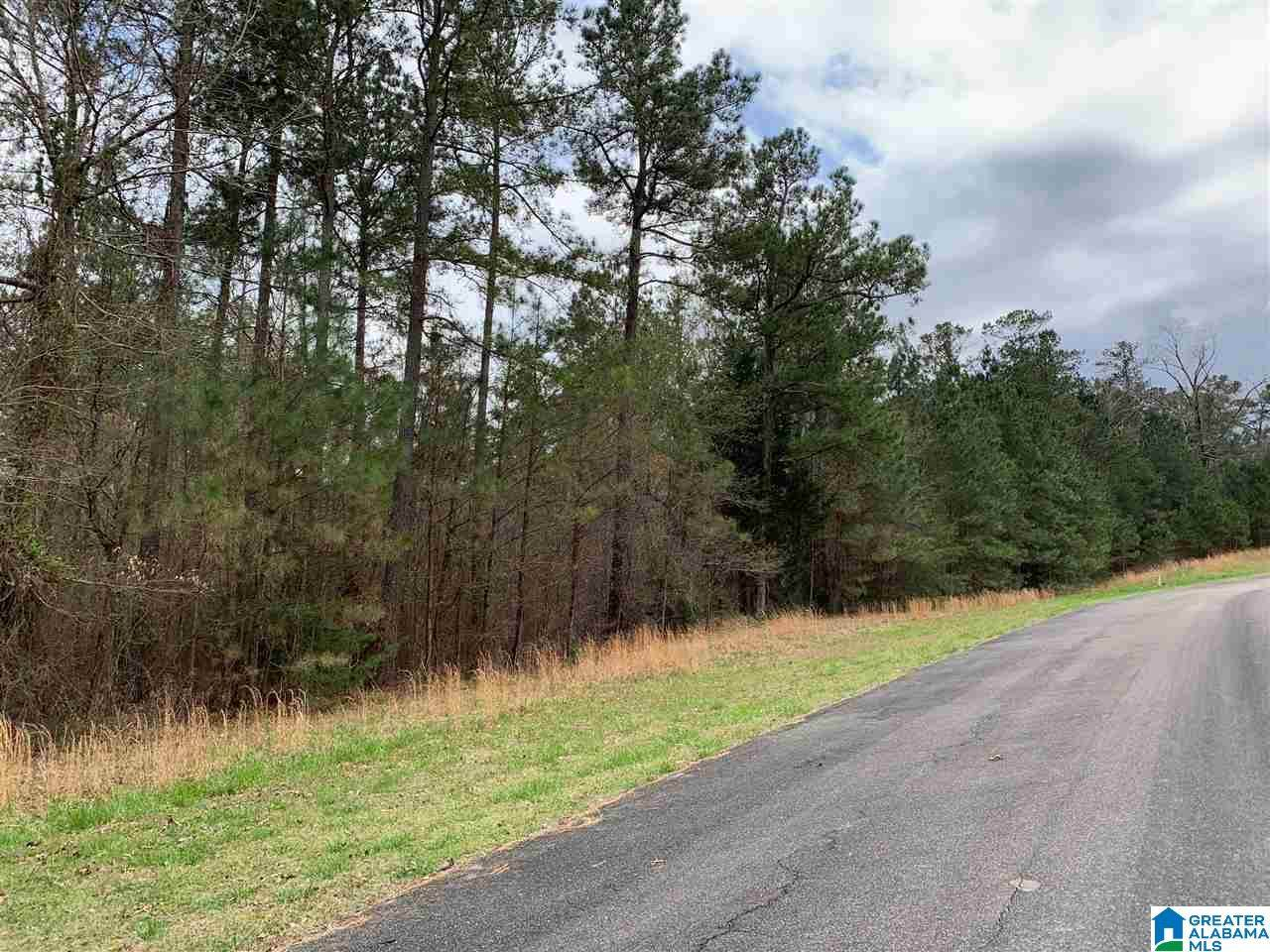 0 Long Point Rd - Photo 1