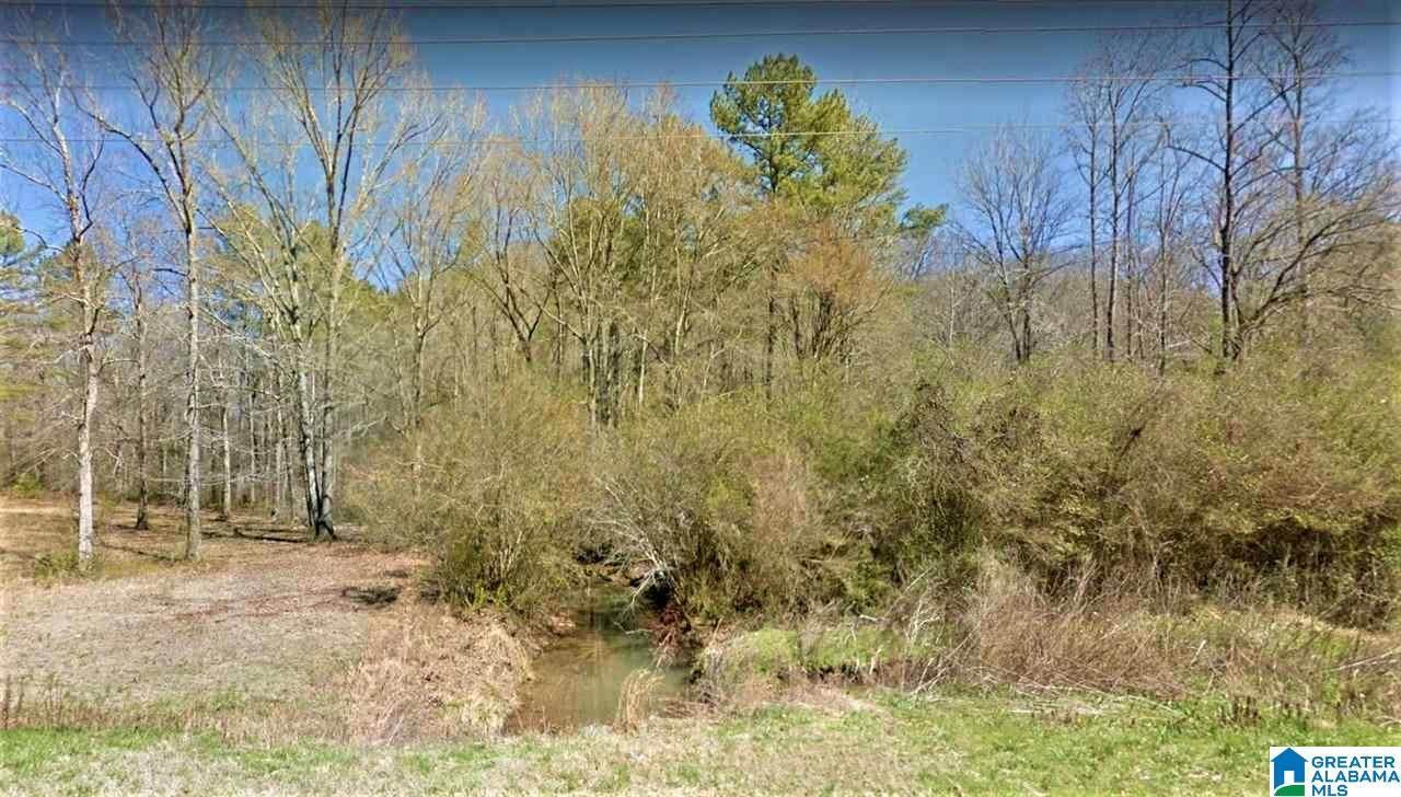 0 Camp Creek Rd - Photo 1