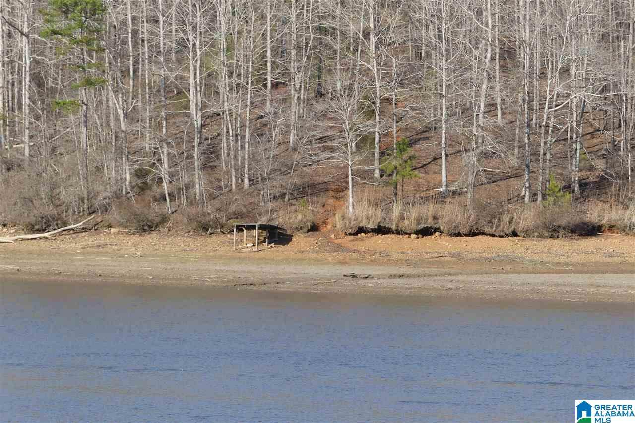 LOT 0 Co Rd 499 - Photo 1