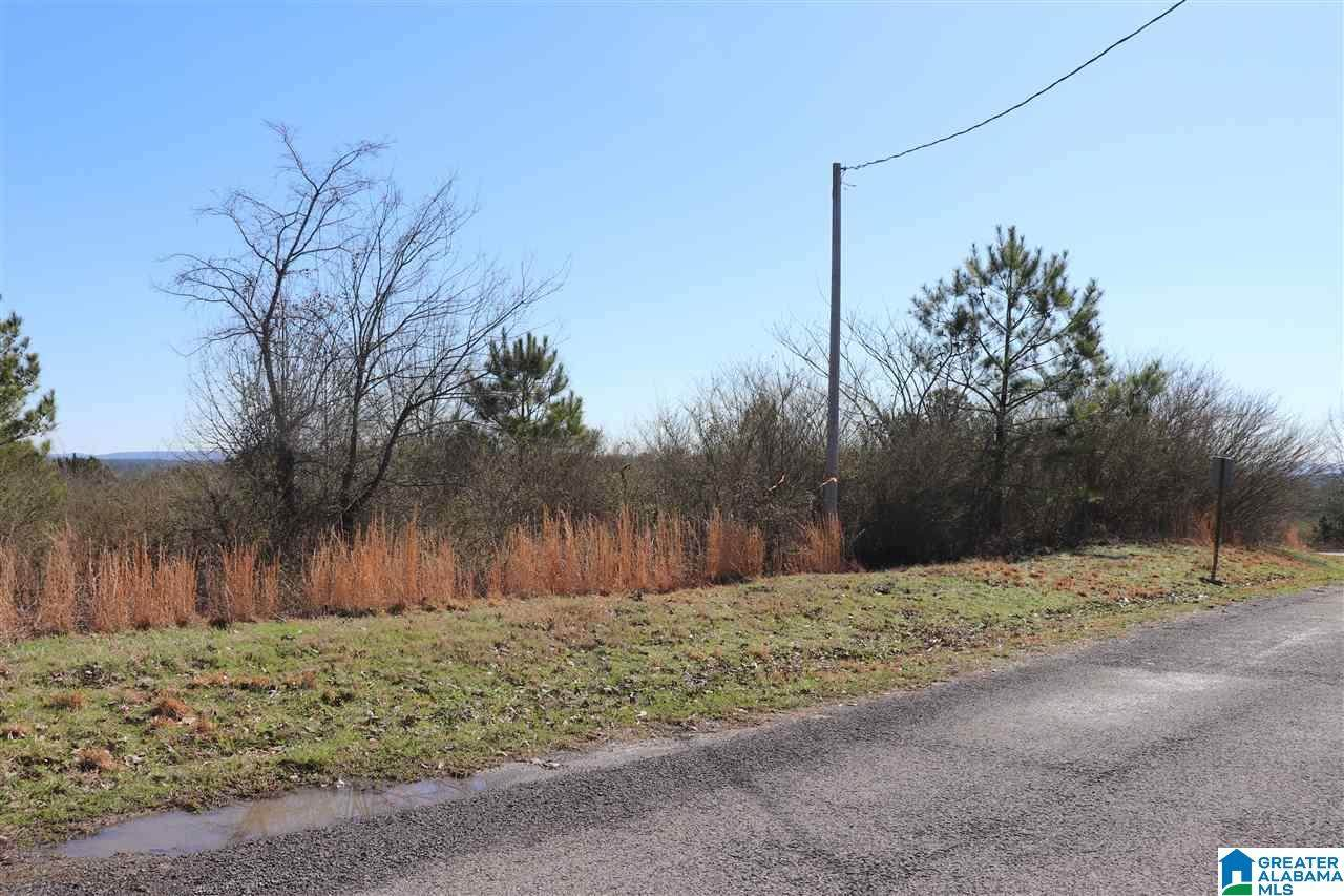 Lot 14 Commissary Rd - Photo 1
