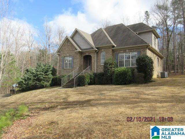 2020 Blue Ridge Ln, Odenville, AL 35120 (MLS #1278359) :: LocAL Realty