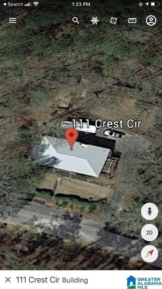 111 Crest Circle, Pell City, AL 35128 (MLS #1278704) :: Sargent McDonald Team