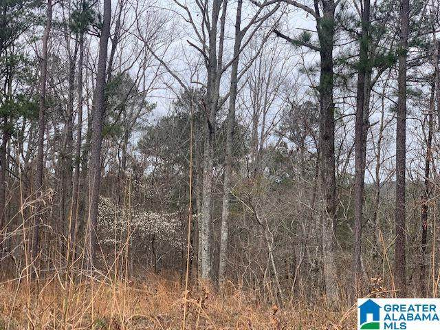000 Grey Hill Rd #1, Green Pond, AL 35074 (MLS #1279366) :: Josh Vernon Group