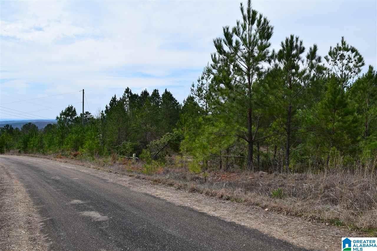 0 County Road 299 - Photo 1