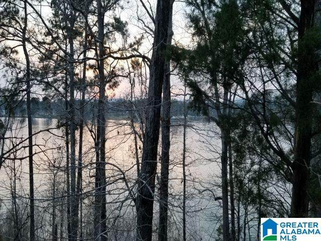 Broken Arrow Rd Lot 119, Sylacauga, AL 35151 (MLS #1279508) :: JWRE Powered by JPAR Coast & County