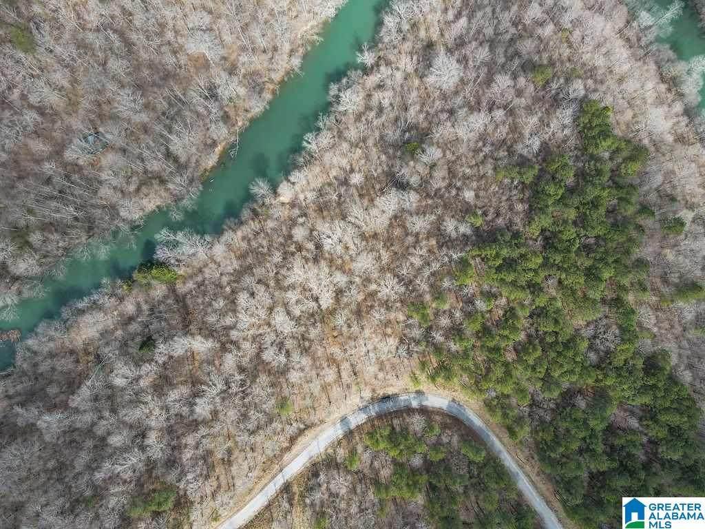 Lot #8 Turkey Bend Drive - Photo 1