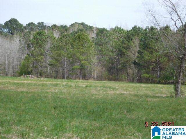 Lasseter Road --, Southside, AL 35907 (MLS #1280066) :: The Fred Smith Group | RealtySouth