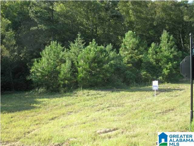 0 Christy Ln #0, Oneonta, AL 35121 (MLS #1280069) :: JWRE Powered by JPAR Coast & County