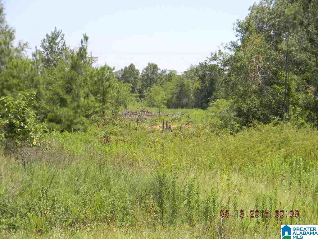 3095 Co Rd 155 - Photo 1