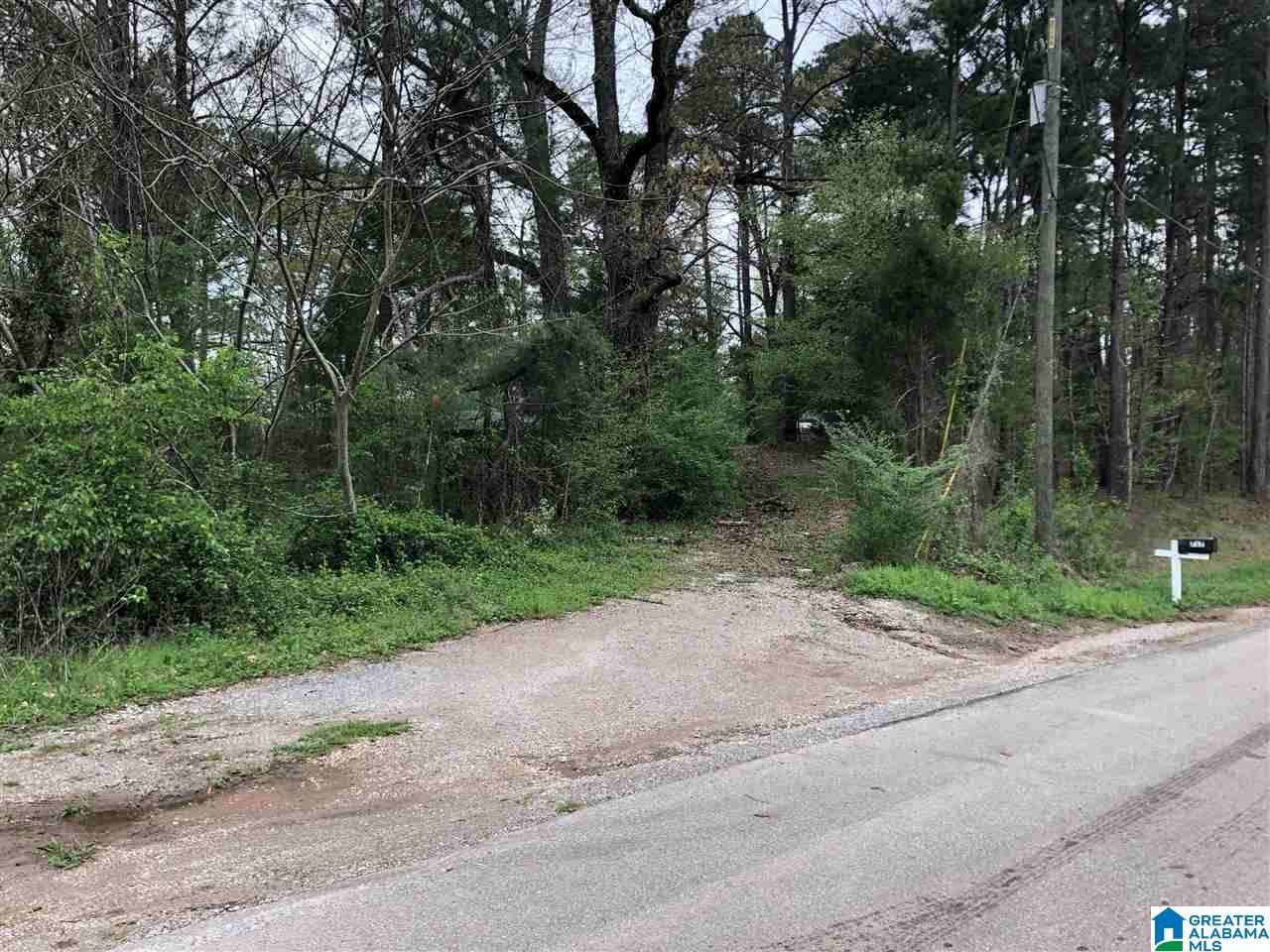 725 Carl Raines Lake Road - Photo 1