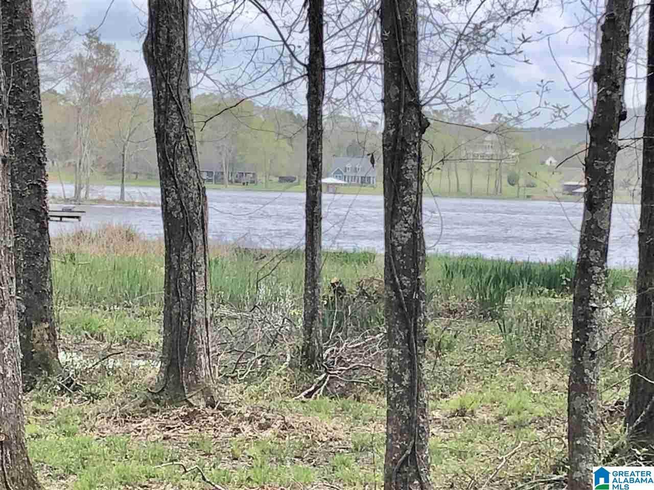 805 General Jackson Memorial Drive - Photo 1