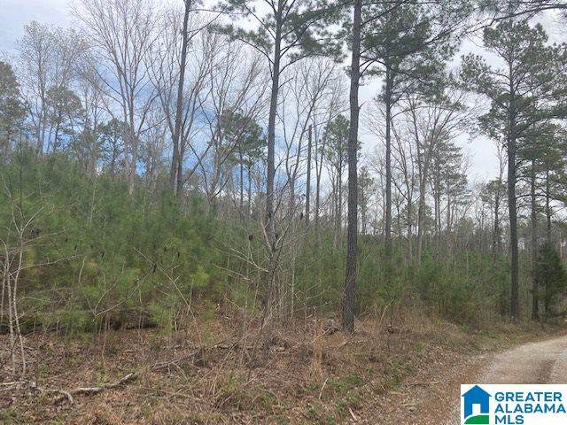Lambert Road 9 Ac., Cragford, AL 36255 (MLS #1280669) :: Howard Whatley