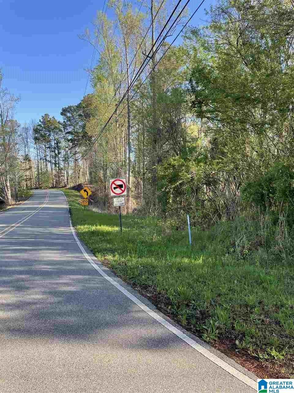 5501 & 5521 Coleman Lake Road - Photo 1