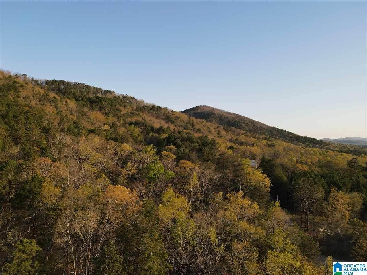 241 Deer Ridge Road - Photo 1