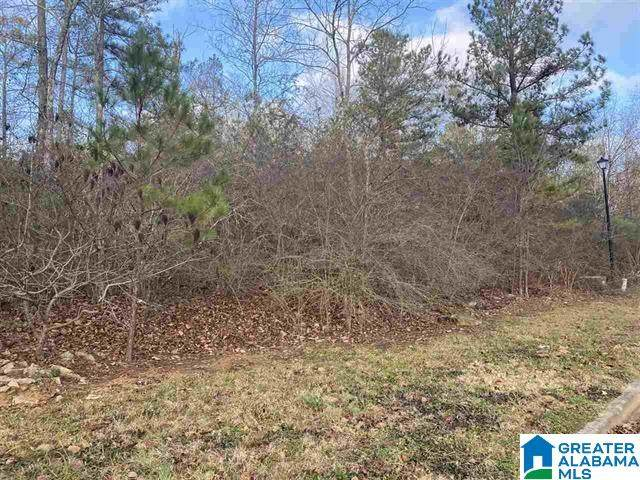 Lot 75 Summit Ridge Way #75, Odenville, AL 35120 (MLS #1281341) :: Howard Whatley
