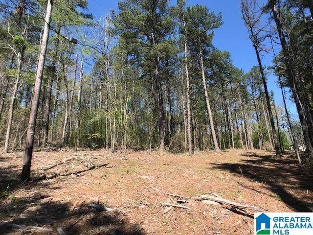 o Ridge Road 10 Acres, Odenville, AL 35120 (MLS #1281431) :: Josh Vernon Group