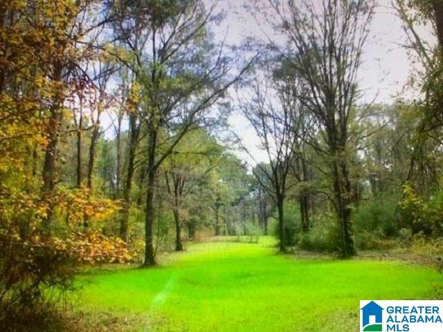 County Road 467 135.84 Acres, Vincent, AL 35178 (MLS #1281476) :: The Natasha OKonski Team