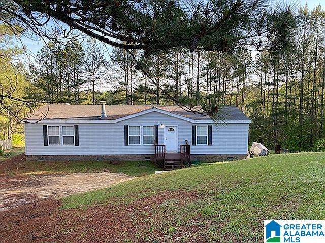 105 Brookwood Court, Odenville, AL 35120 (MLS #1283649) :: Bentley Drozdowicz Group