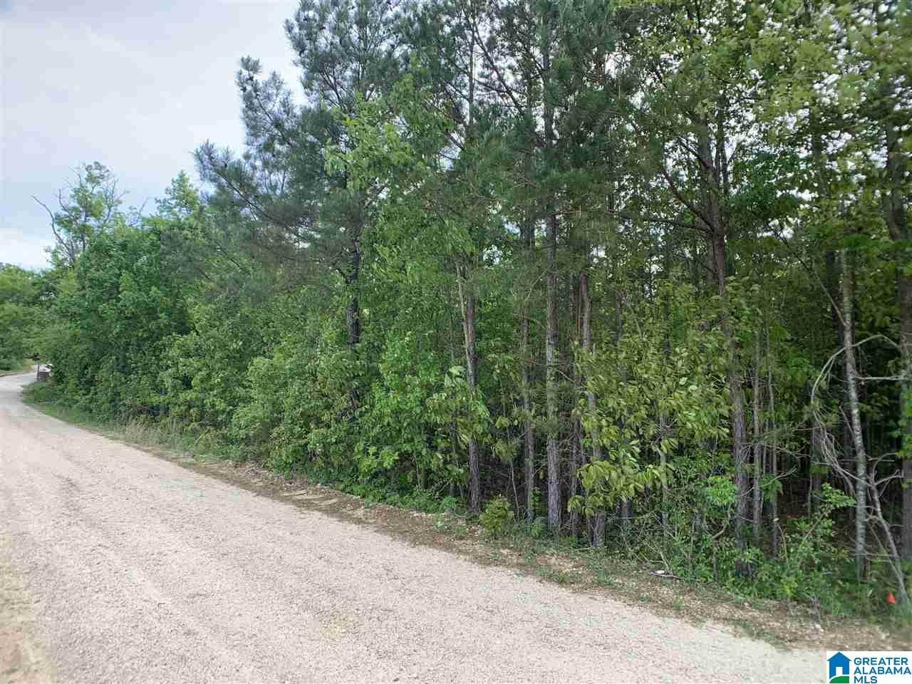 0 Pleasant Acres Trail - Photo 1