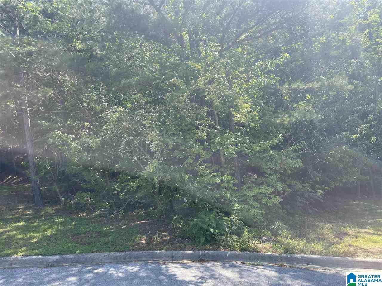 4591 Rock Creek Circle - Photo 1