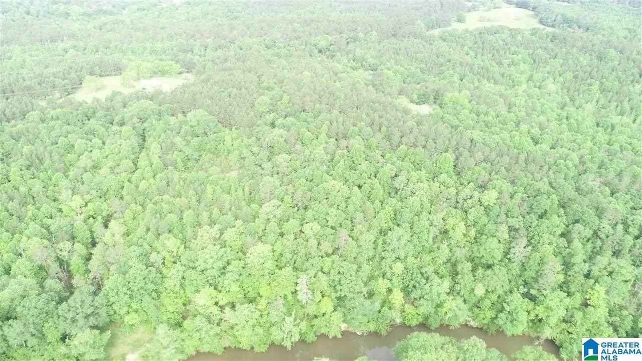 26 acres County Road 532 - Photo 1