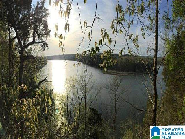 219 Pine Ridge Road #1, Bessemer, AL 35023 (MLS #1284959) :: Bentley Drozdowicz Group