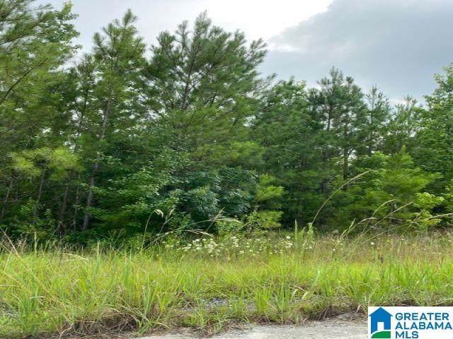 Preserve Trail Lot 231, Sylacauga, AL 35151 (MLS #1288365) :: The Natasha OKonski Team