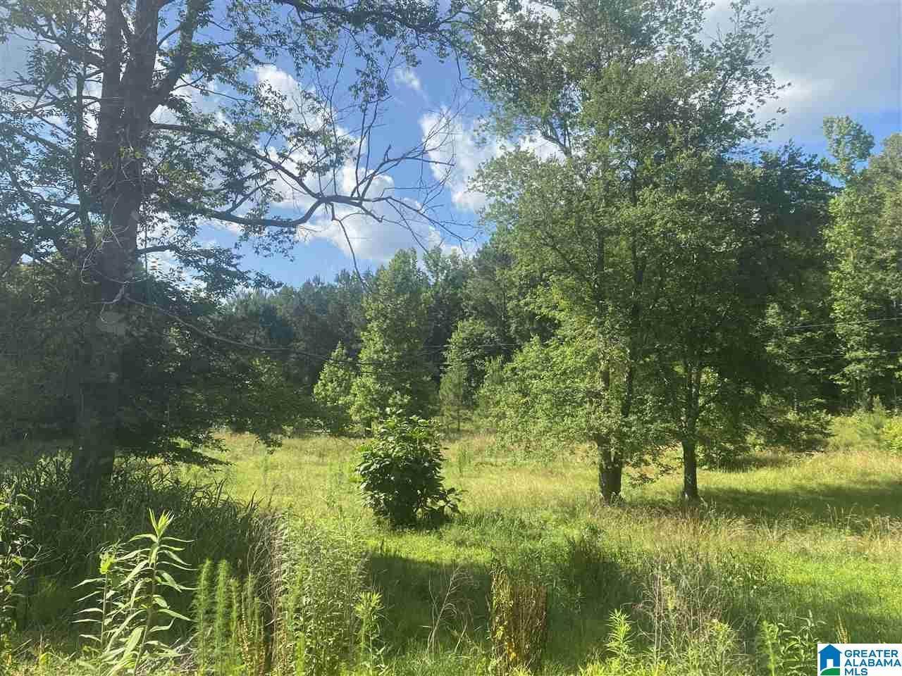 1234 County Road 4801 - Photo 1