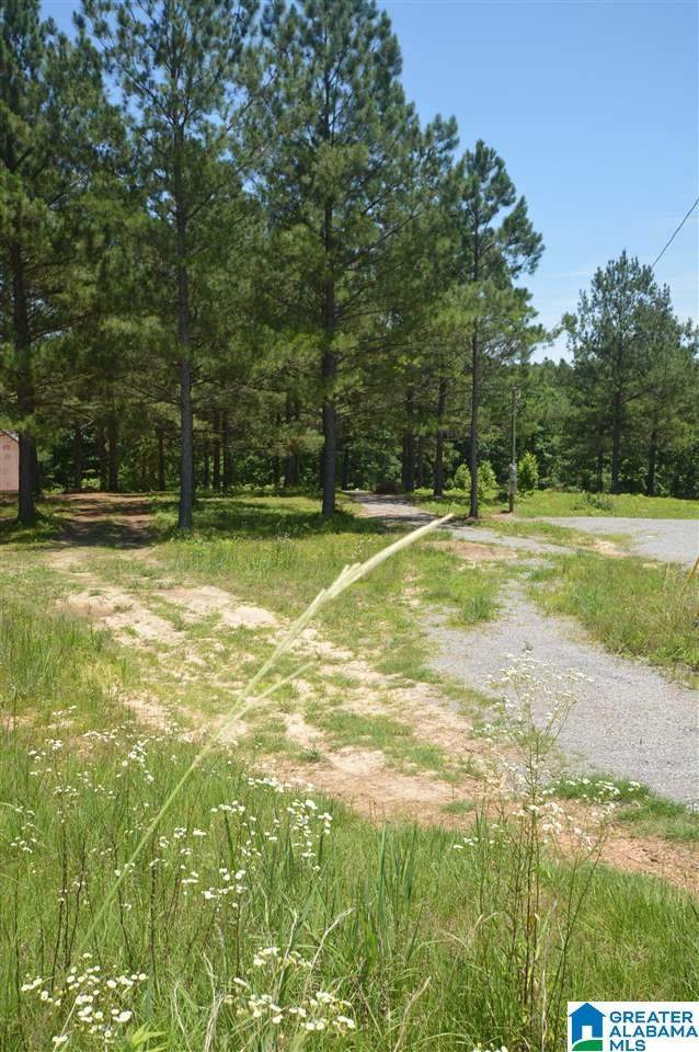 230 County Road 373 #26, Crane Hill, AL 35053 (MLS #1289643) :: Gusty Gulas Group