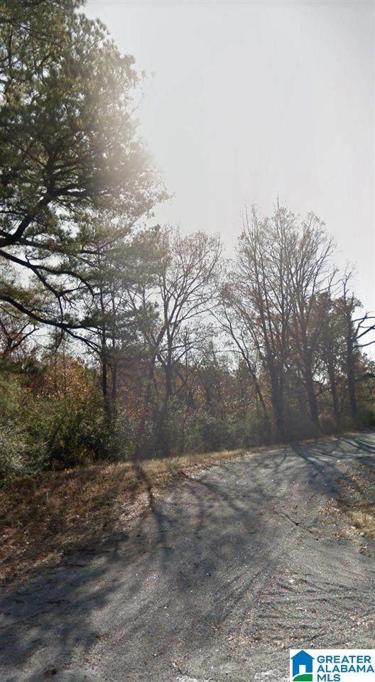 6100 Mount Olive Road - Photo 1