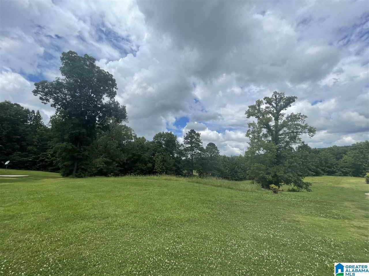 156 Mount Eagle Lane - Photo 1