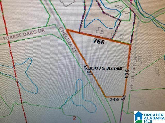 0 Highway 47 #1, Chelsea, AL 35043 (MLS #1291782) :: Sargent McDonald Team