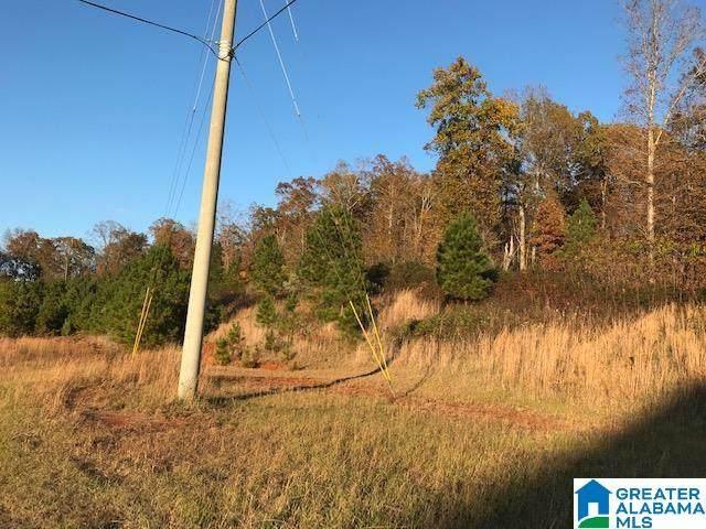 0 Maddox Farm Road 57 Acres, Odenville, AL 35120 (MLS #1292522) :: The Natasha OKonski Team