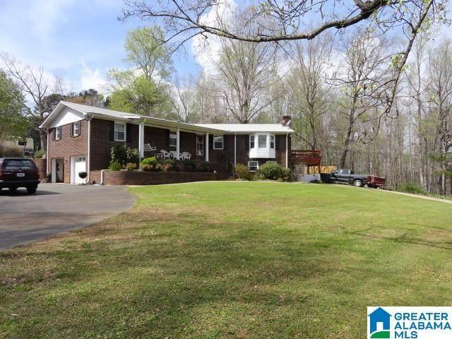 3040 Pine Hill Drive, Adamsville, AL 35005 (MLS #1292753) :: LIST Birmingham