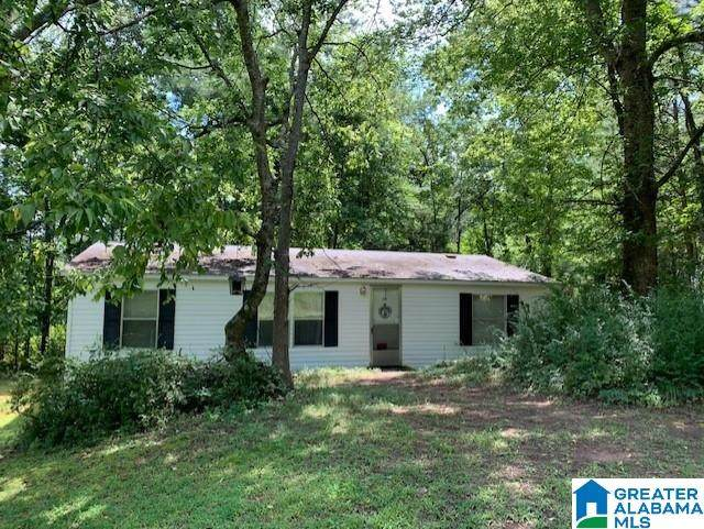 248 Mustang Ridge, Brierfield, AL 35035 (MLS #1293323) :: The Fred Smith Group   RealtySouth