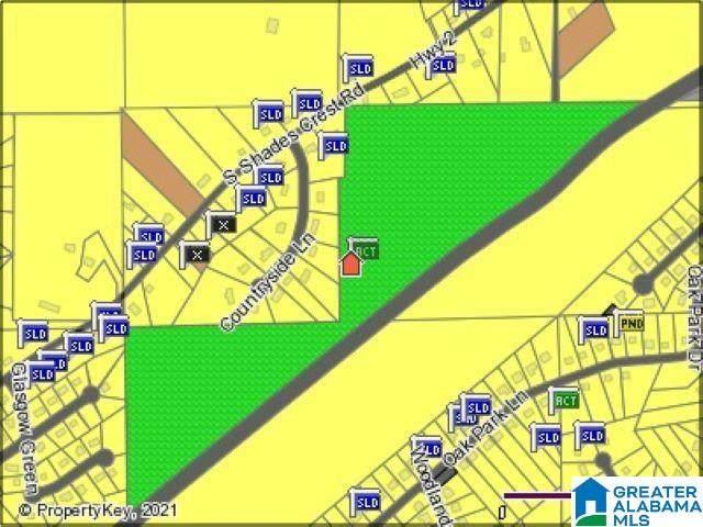 4409 Shades Crest Road #0, Helena, AL 35022 (MLS #1293789) :: Krch Realty