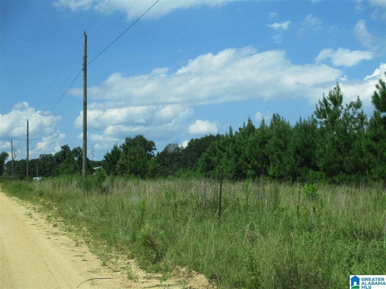 0 County Road 441 - Photo 1
