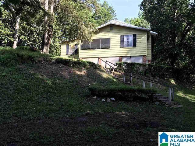40 Western Drive, Montevallo, AL 35115 (MLS #1296885) :: Josh Vernon Group