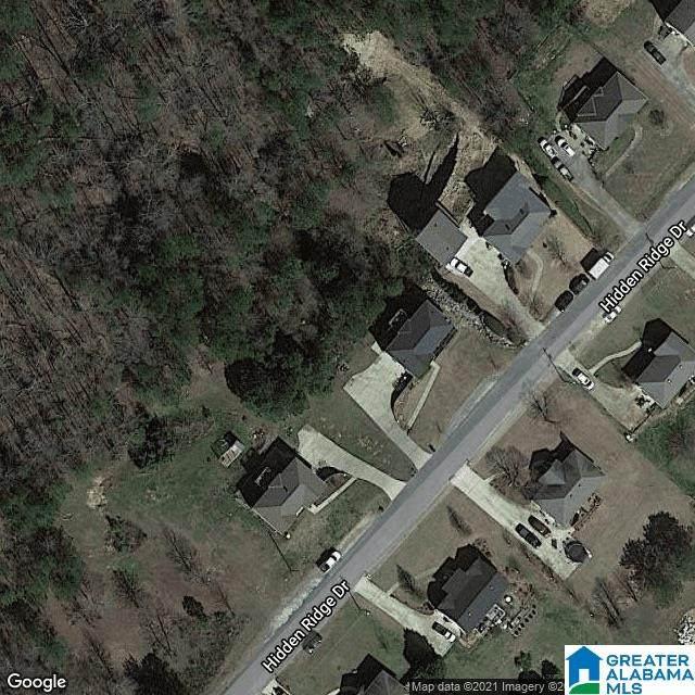 203 Hidden Ridge Drive, Odenville, AL 35120 (MLS #1298879) :: Howard Whatley