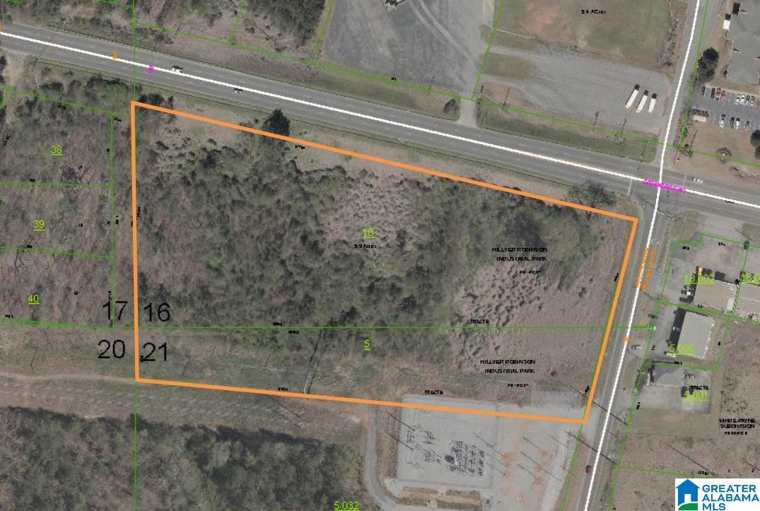 00 Hillyer Robinson Parkway - Photo 1