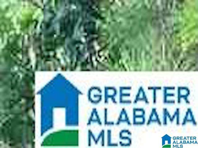 Lot 11 Gladys Drive Lot 11, Lakeview, AL 35111 (MLS #1300860) :: Josh Vernon Group