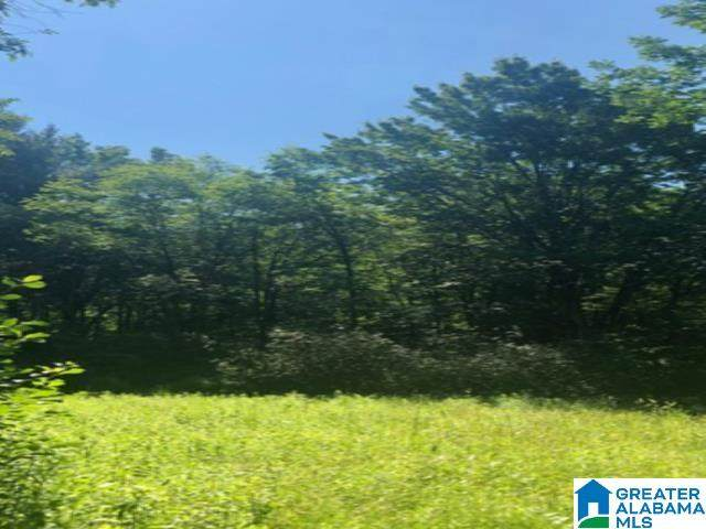 4821 South Shades Crest Road 40 Acres, Helena, AL 35022 (MLS #1300864) :: Lux Home Group