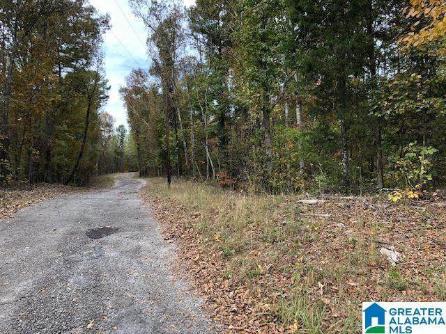 0 Chicksaw Trail #12, Ohatchee, AL 36271 (MLS #1301108) :: EXIT Magic City Realty