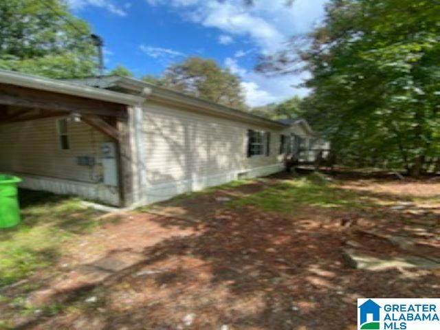 69 Buckshot Lane, Odenville, AL 35120 (MLS #1301149) :: Josh Vernon Group